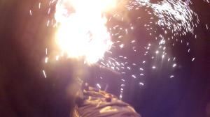 Canopy Burn Screen Grab